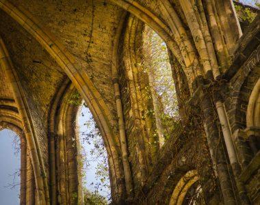 Abdij van Villers: een indrukwekkende ruïne