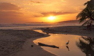 Costa Rica, een voorbeeld van groen beleid?