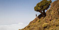 Marokko en het Atlasgebergte: Tizgui – Tizi Oussem