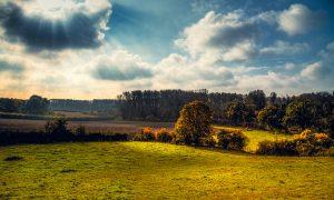 Ecologisch leven in tien stappen