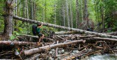 Trektocht naar Della Falls: avontuur op Vancouver Island